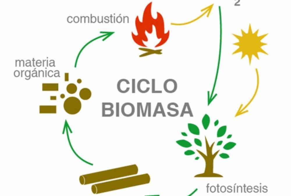 Ahorra con la biomasa